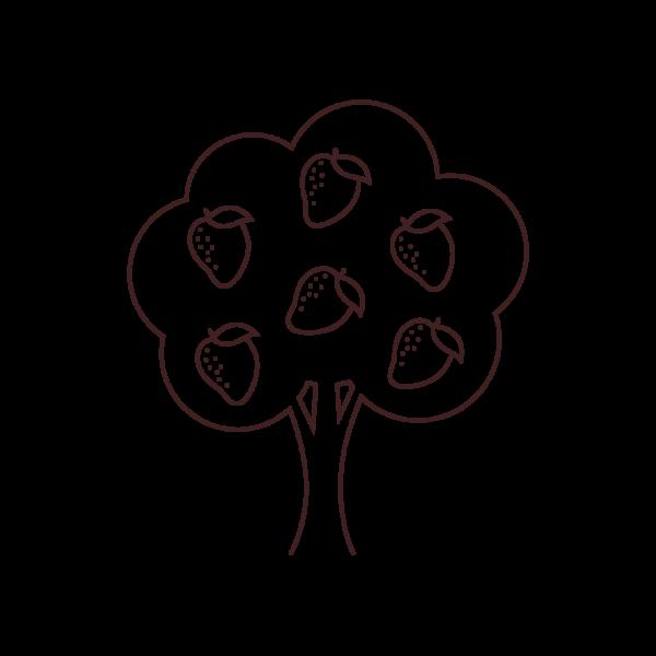 Nibblish Process Illustration_Grow Native